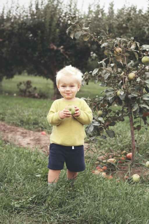 toddler standing beside green leafed plant holding fruit
